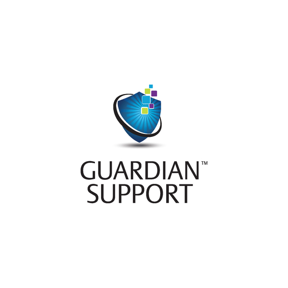 Guardian™ Support for Mimic™ Simulation System